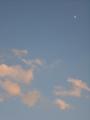 [空][雲][夕方][月]夕空
