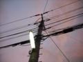 [空][雲][夕方][電柱][電線][街灯]電柱