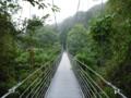 [橋]つり橋、道志