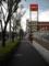 街路樹と歩道