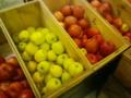 [植物][物][食べ物]りんご