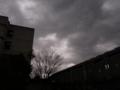 [雲][空][木][建物]大学構内