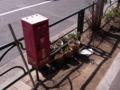[物][植物]消火器と植木鉢