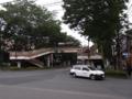 [街][木][建物][自動車]歩道橋