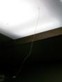 [虫][物]蜘蛛の巣と電灯の紐