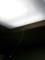 蜘蛛の巣と電灯の紐