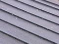 [雪][建物]灰雪