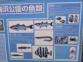 [文字・看板][魚]海浜公園の魚類