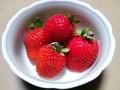 [植物][物][食べ物]イチゴ