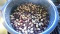 [物][食べ物]シャチ豆
