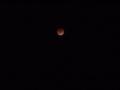 [月][夜][空]月食