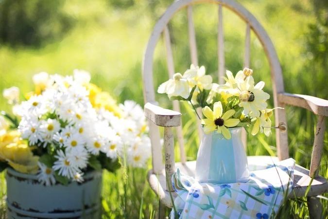 summer-still-life-daisies-yellow-garden-flowers-1