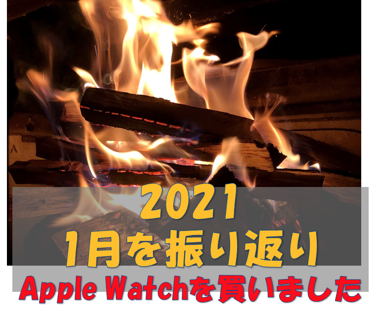 f:id:Suiten:20210206202021p:plain