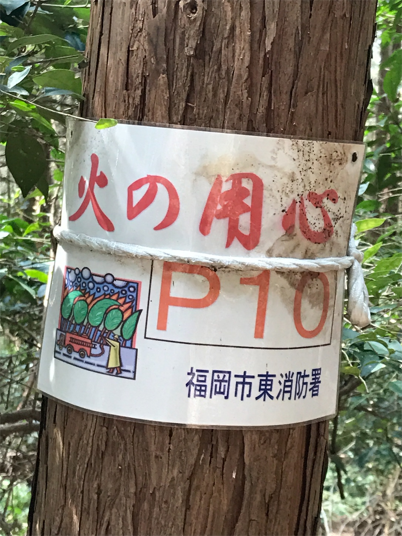 f:id:Suke873:20170325173636j:image