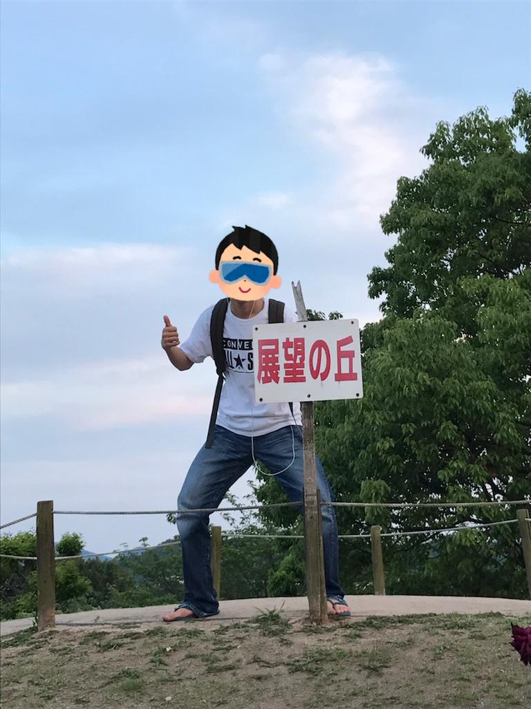 f:id:Suke873:20170520223440p:image
