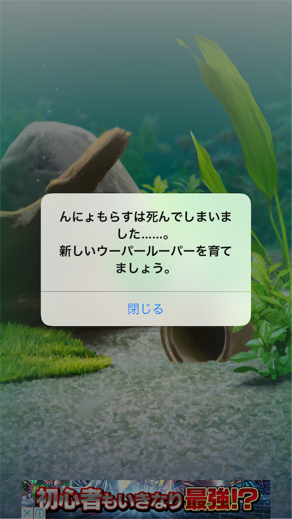 f:id:Suke873:20170601222329p:image