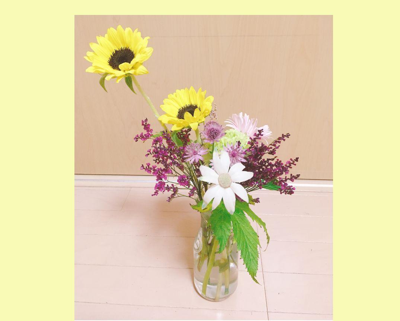 f:id:Sunflower_p:20200629004909j:plain
