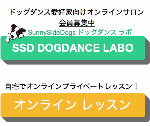 f:id:SunnySideDogs:20200413104029p:plain