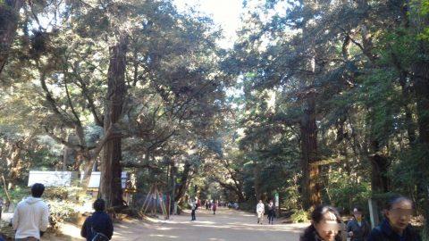 鹿島神宮 - 参道