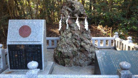 鹿島神宮 - さざれ石