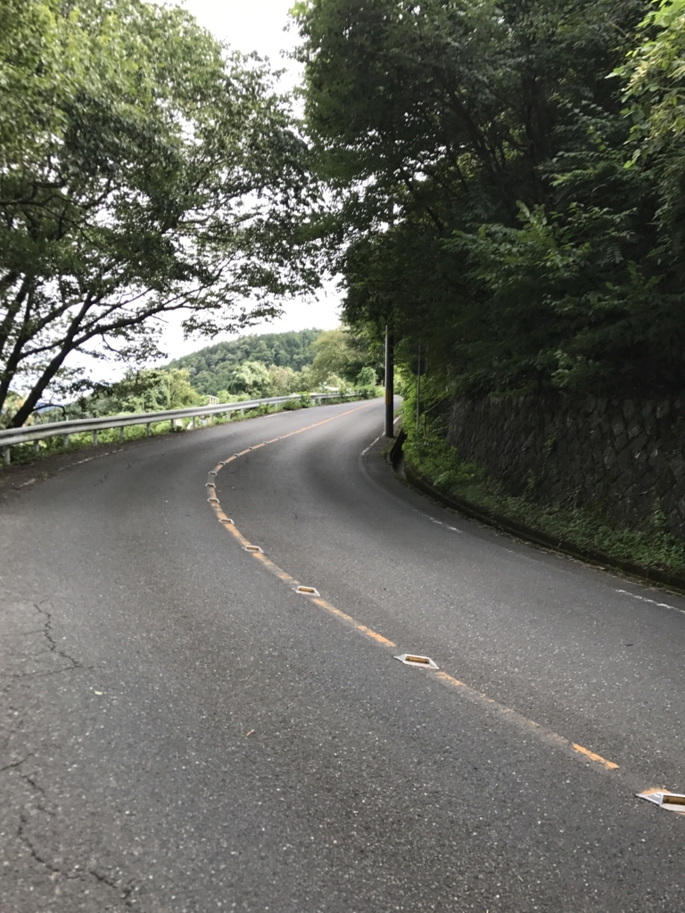f:id:Syo-waOtoko:20170815230808j:plain