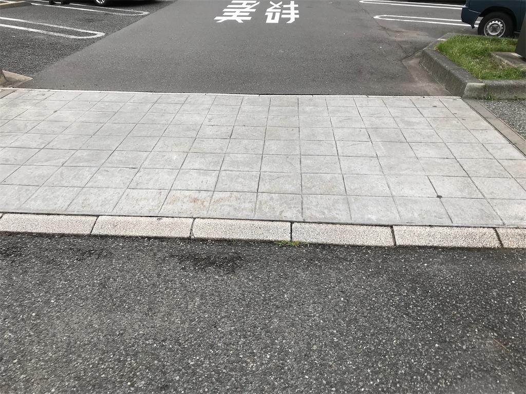 f:id:Syo-waOtoko:20200202011308j:image