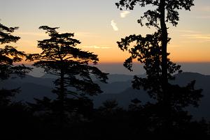 f:id:TADAO-FACTORY:20120920155722j:image