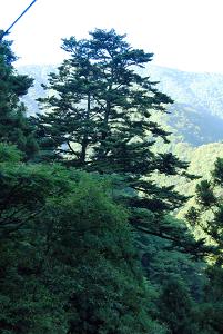 f:id:TADAO-FACTORY:20120920155743j:image