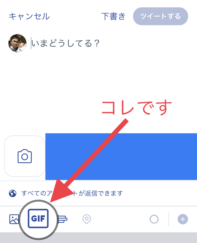 GIF画像 挿入 アイコン twitter