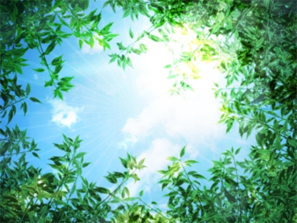 f:id:TAKA4612:20200207043950j:image