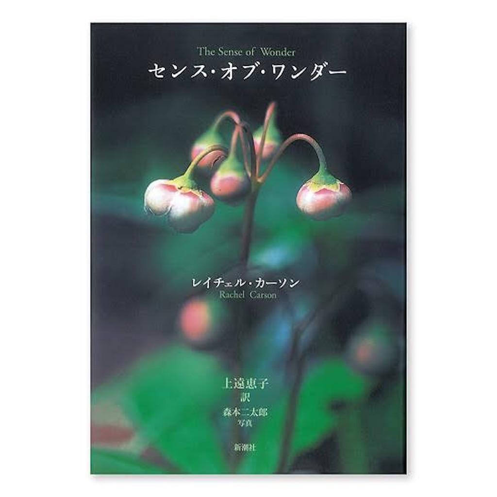 f:id:TAKAHIRO0324:20200322101954j:image