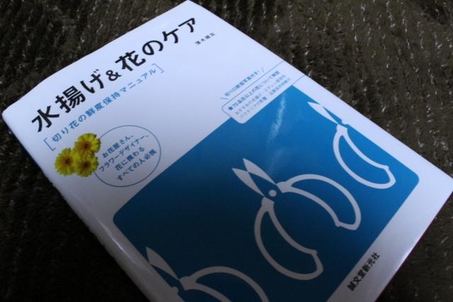 f:id:TAKAMISAWA:20170101220252j:plain