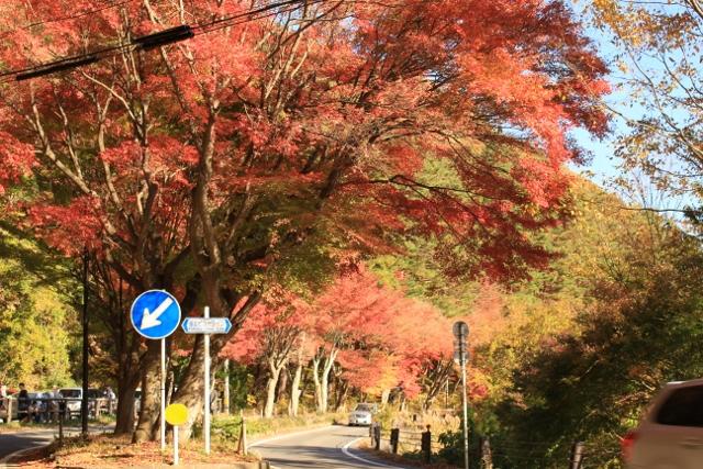 f:id:TAKAMISAWA:20171111185127j:plain
