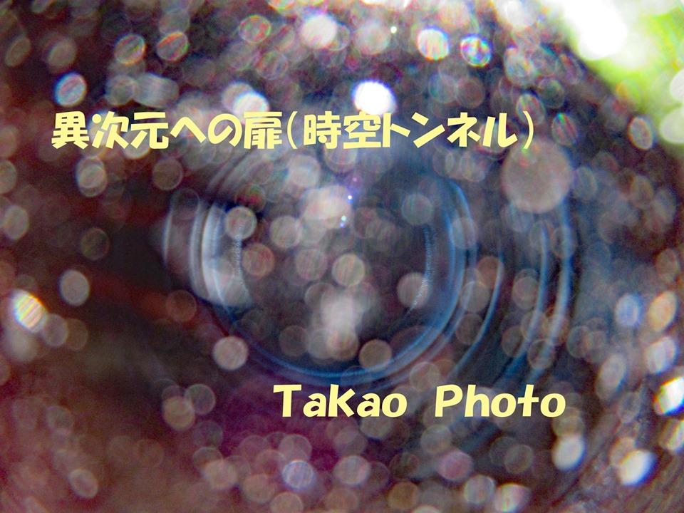 f:id:TAKAOKIYOMI:20201121231129j:plain