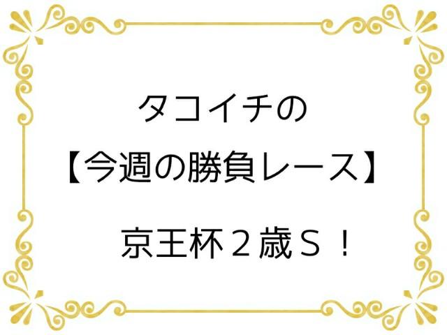 f:id:TAKOICHI:20191102123354j:image