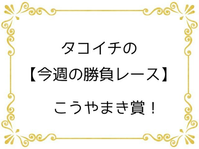 f:id:TAKOICHI:20191130102426j:image