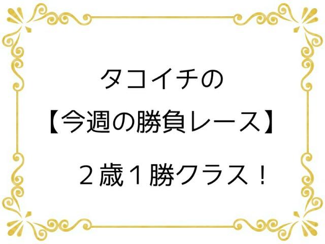 f:id:TAKOICHI:20191201102729j:image