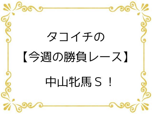f:id:TAKOICHI:20200314115502j:image