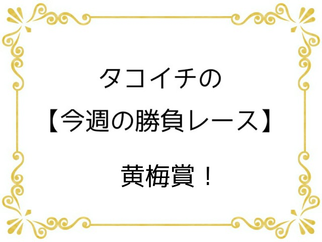 f:id:TAKOICHI:20200321114513j:image