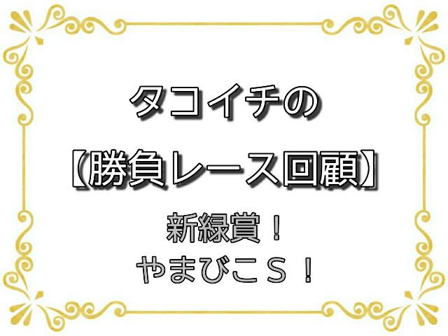 f:id:TAKOICHI:20200427130002j:image