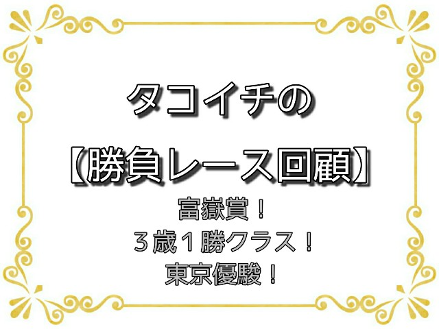 f:id:TAKOICHI:20200601073606j:image