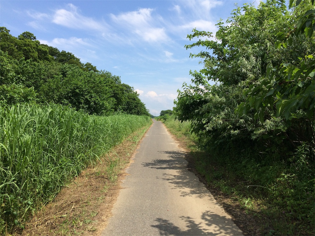 f:id:TAMURA-FM:20170527235002j:image