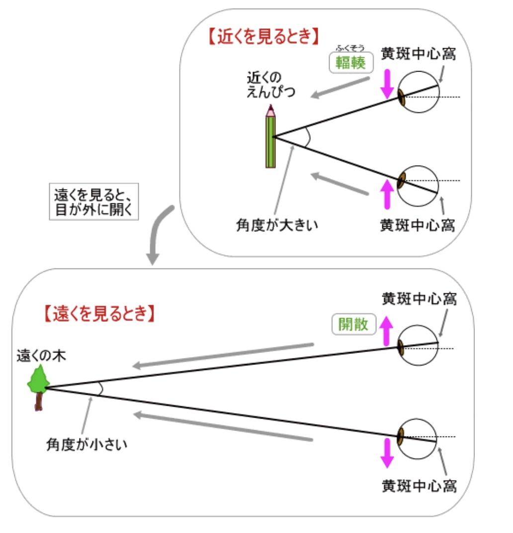 f:id:TARAchang:20210420115308j:plain