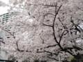 威光山 法明寺 池袋