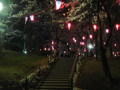 飛鳥山公園 桜 ライトアップ 2009