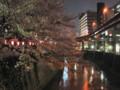 神田川 桜 2009 江戸川橋