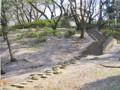 三ッ池公園 桜 2009