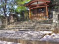 法明寺 安国堂 桜 2009
