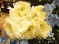 青山フラワーマーケット バラ