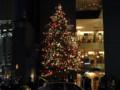 銀座MIKIMOTO クリスマスツリー